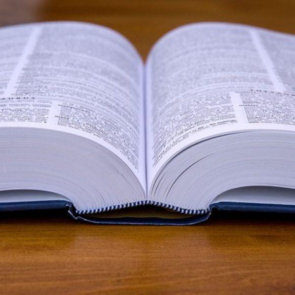 Remise des dictionnaires